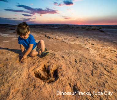 Dinosaur-Tracks_sized_LNT_2020_2